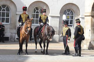 בדיקה יומית של משמר הסוסים