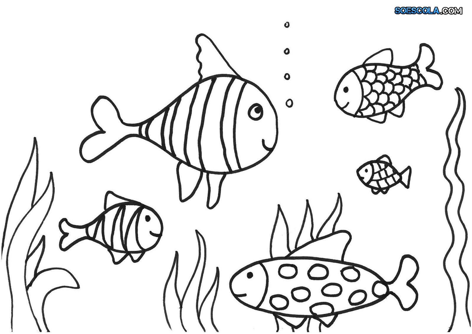 8 Desenhos de Peixes para colorir — SÓ ESCOLA