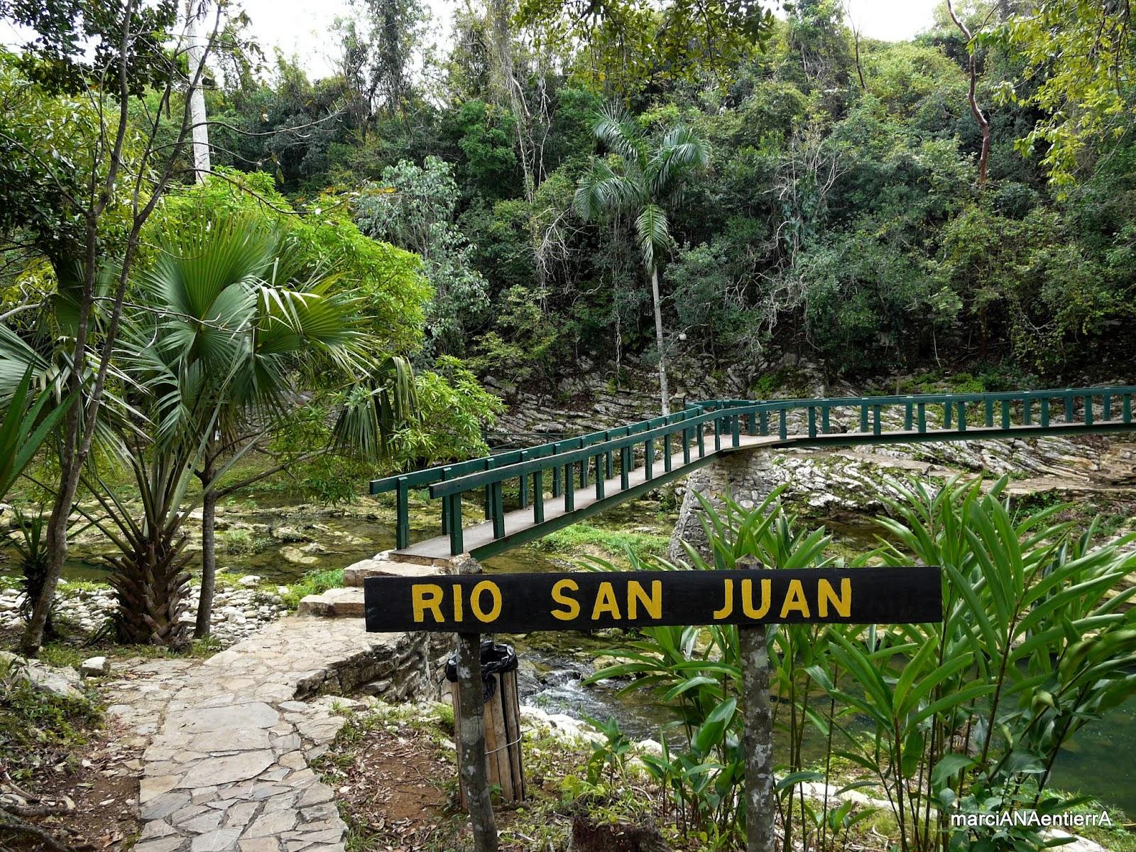 Rainforest Cafe San Juan