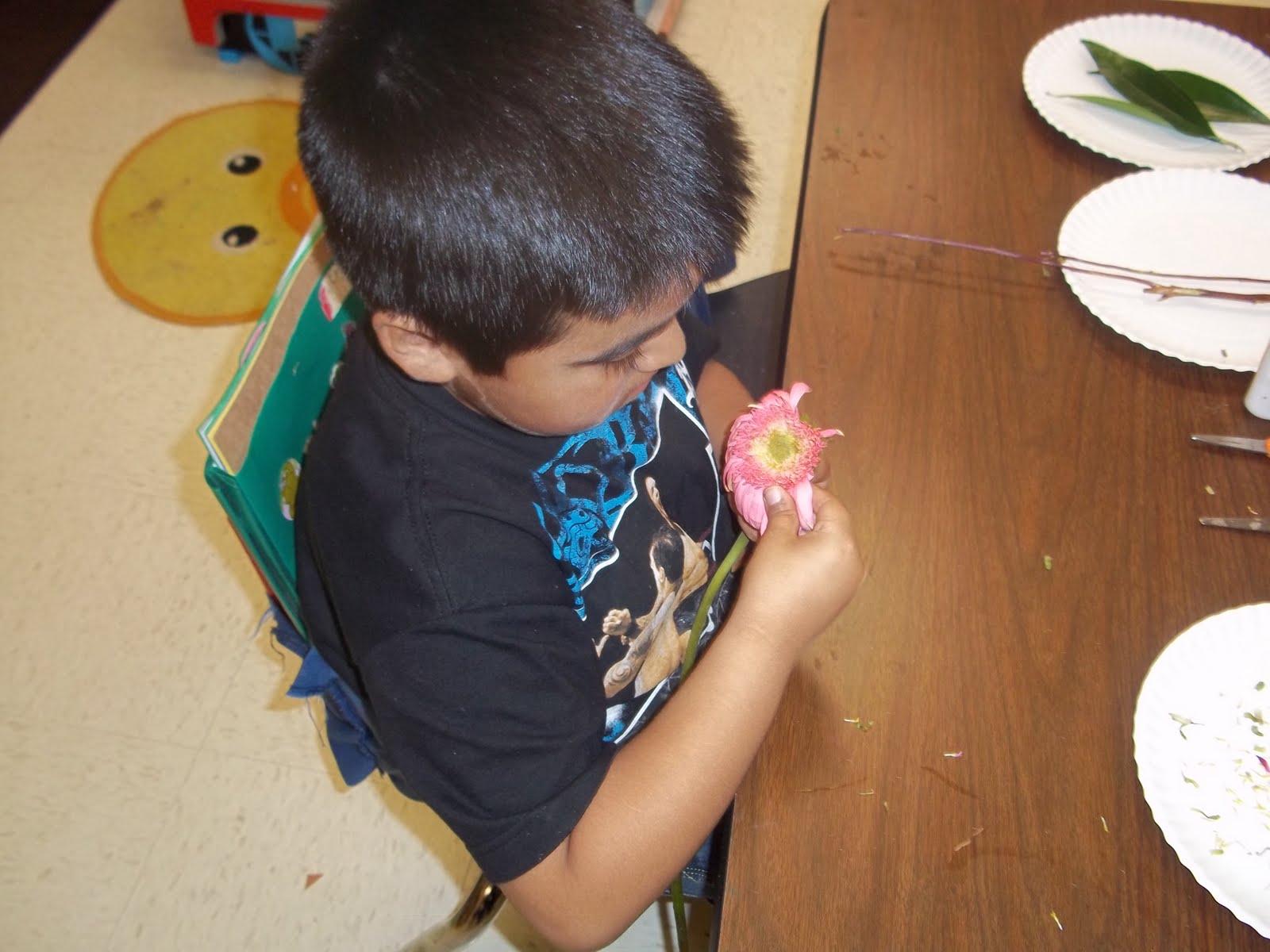 Kinder Garden: Mrs. Wood's Kindergarten Class: Flower Brace Map