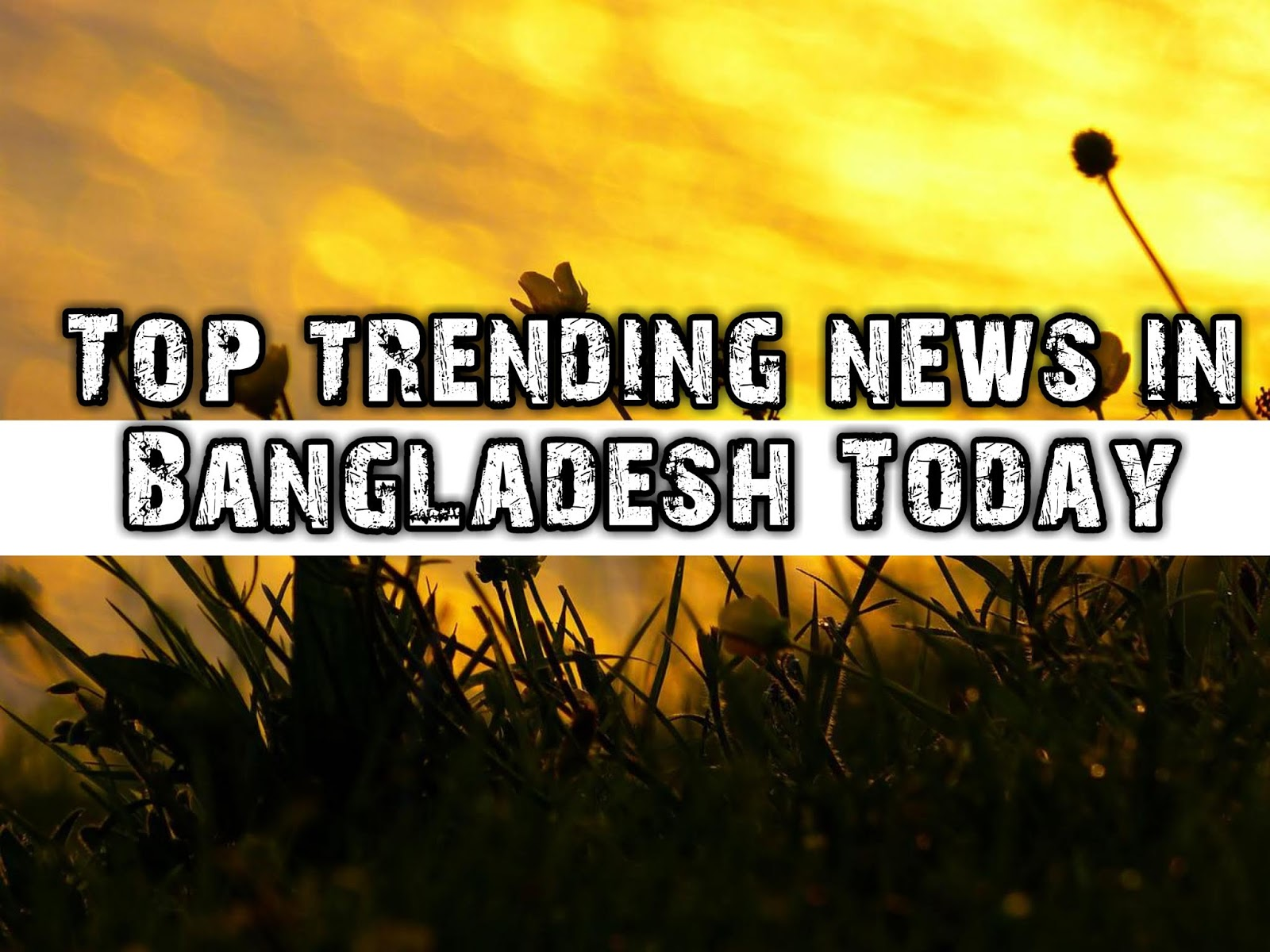 trending news today - HD 1600×1200