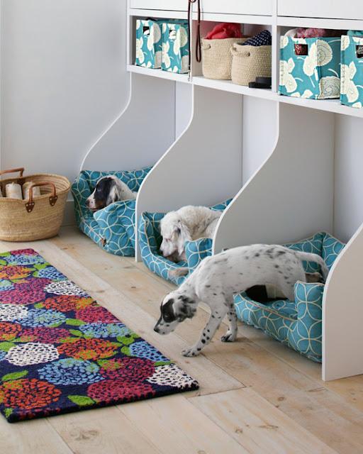 Pet bed organizer:: OrganizingMadeFun.com