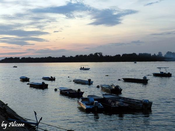 Zemun-Belgrad-Dunare