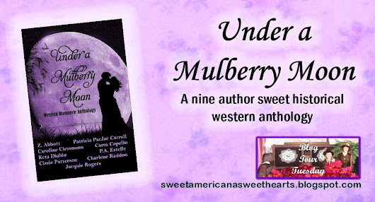 Blog Tour Tuesday: UNDER A MULBERRY MOON