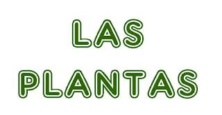http://capitaneducacion.blogspot.com.es/2017/11/3-primaria-ciencias-de-la-naturaleza_10.html