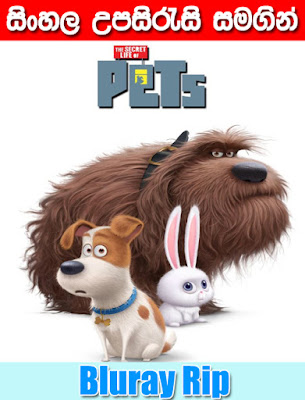 The Secret Life of Pets 2016 Sinhala Subtitle