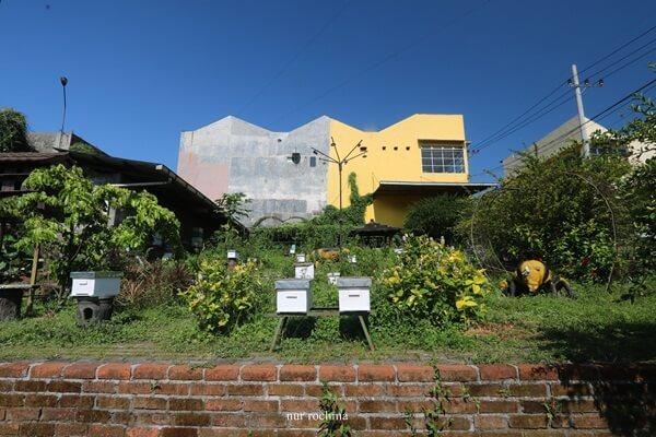 peternakan lebah