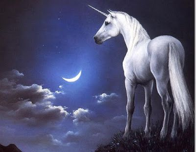 Dibujo de unicornio bajo el cielo estrellado