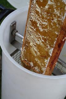 honey spinner