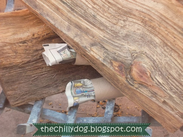 How to make camp fire starters with a toilet paper tube, dryer lint and newspaper | The Chilly Dog