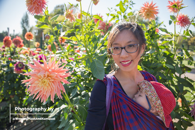 [Image of a smiling tan skin bespectacled Asian woman wearing a sleeping toddler on her front in a red and blue checked woven wrap in a garden of dahlias blooming above her head. The blooms are bright and all colors and some larger than her face.]