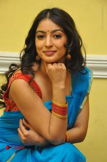 Telugu Actress Vaibhavi Stills in Blue Saree at Www.Meena Bazaar Movie Opening  0084.JPG
