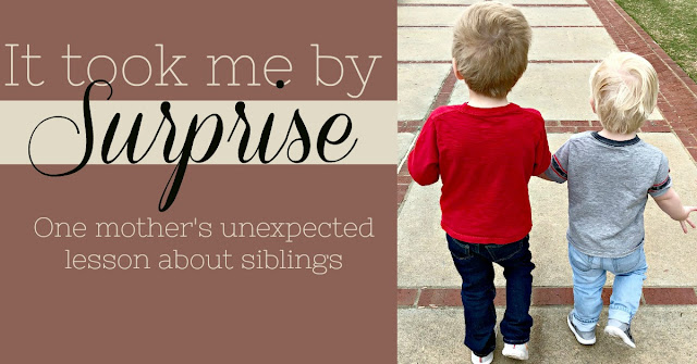 It Took Me by Surprise - One mother's unexpected lesson about siblings