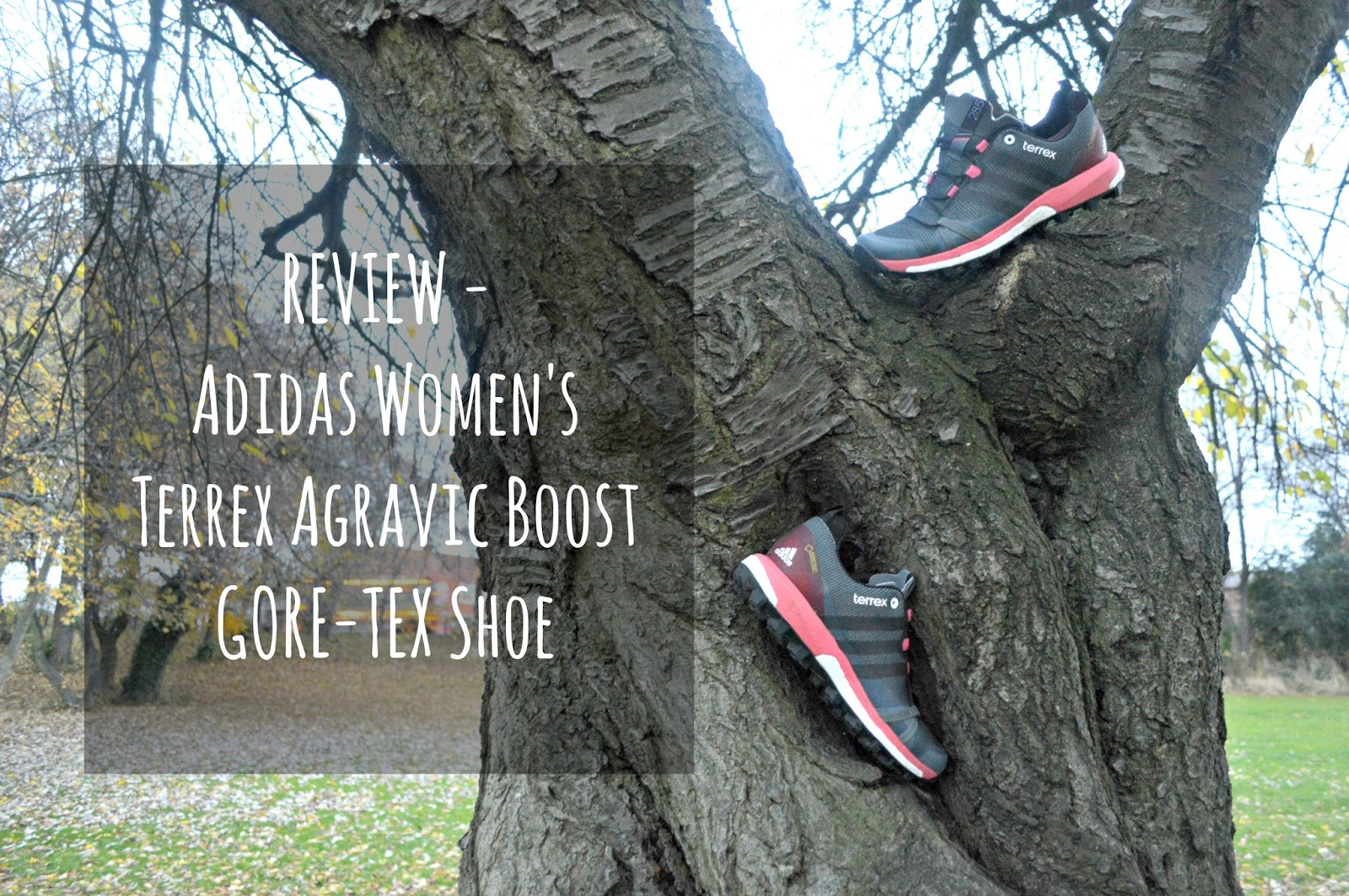 Adidas Women's Terrex Agravic Boost GORE-TEX Shoe - Review