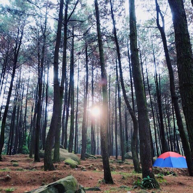 Info Lengkap Gunung Pancar, Wisata Alam Paling Populer Di