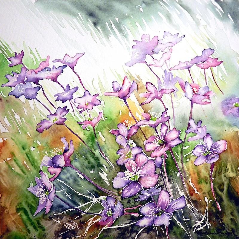 flowers watercolor, acquerello fiori, Cristina Dalla Valentina