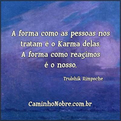 A forma como as pessoas nos tratam é o Karma delas. A forma como reagimos é o nosso. Trulshik Rimpoche