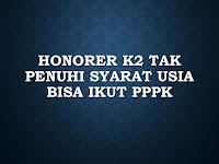 Honorer K2 Tak Penuhi Syarat Usia Bisa Ikut PPPK