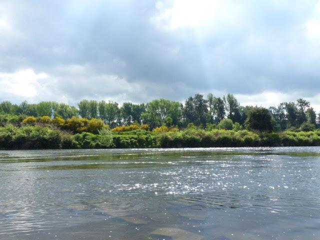 Wanderung Rundweg Bochum Ruhrgebiet Kopf frei bekommen Schritt für Schritt Wald Natur Depression Reizarm Entschleunigung Achtsamkeit Auszeit Ruhr