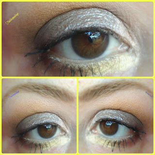 paciugopedia_3_july_taupe_smoky