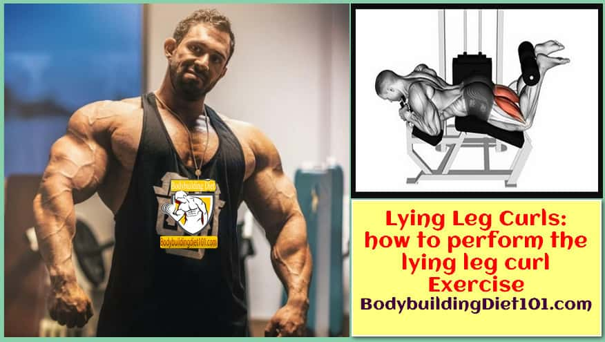 Lying Leg Curls: how to perform the lying leg curl Exercise