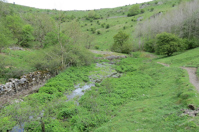 A steep sided valley, its sides studded with small trees. The marshy remains of stream runs along the valley floor.