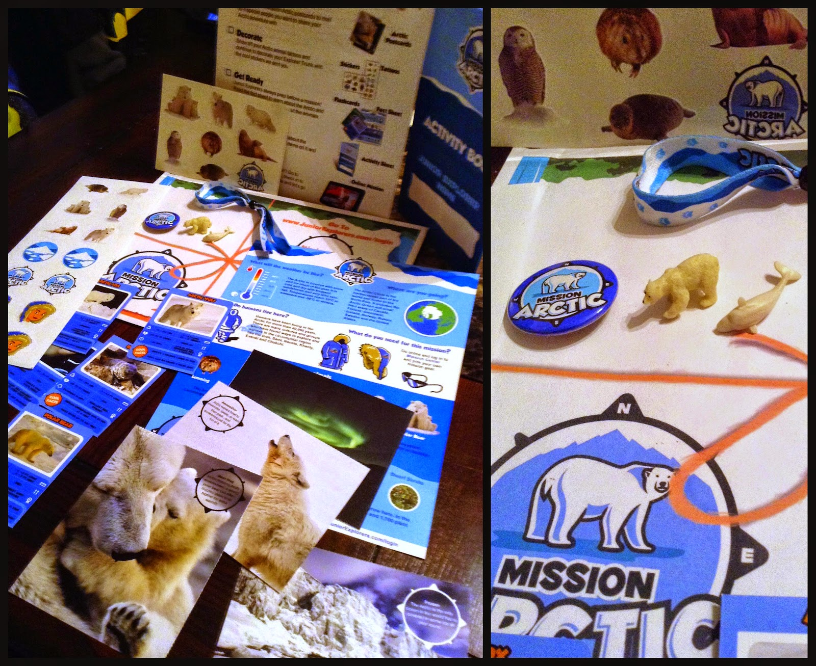 The Arctic Mission Kit from @JuniorExplorers