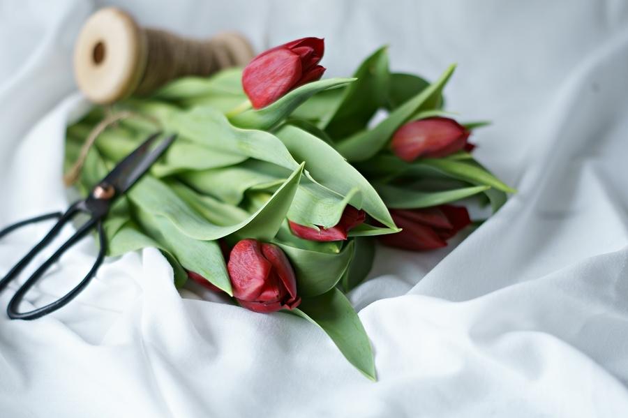 Blog + Fotografie by it's me! - Wohnen - rote Tulpen aus der Nähe