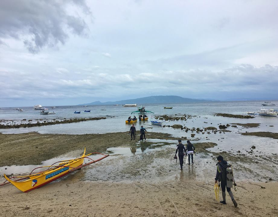 diving guide to puerto galera mindoro