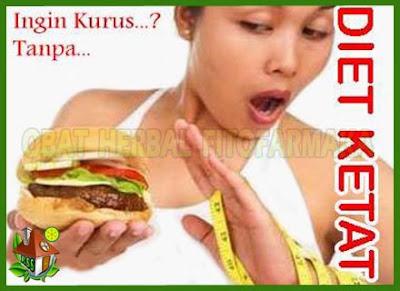 langsing walau makan banyak, langsing tanpa diet, langsing masih bisa makan enak