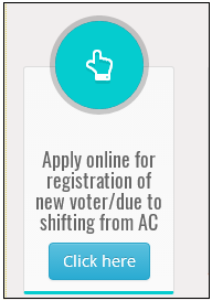 Make color voter id online