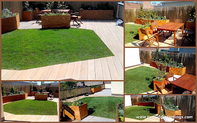Photos of the Green roof lawn in a rooftop in New York Installed by New York Plantings