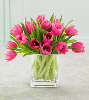 Jual Bunga Tulip Online Jakarta
