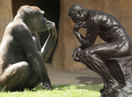 psihologia evolutionista psihopatologie psihiatrie depresie anxietate