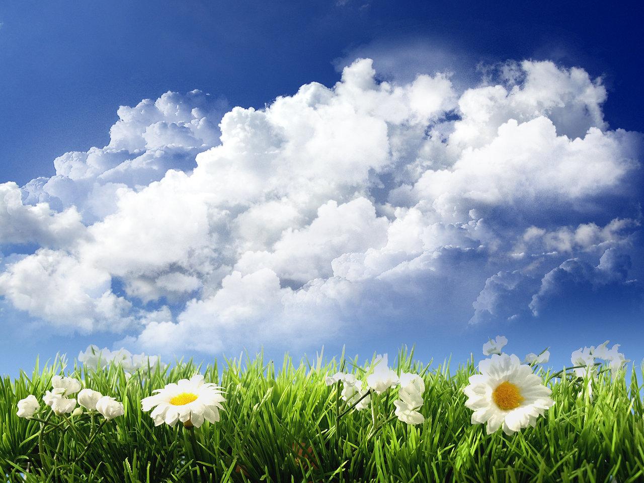 Wallpaper Untuk Laptop: Sky And Flowers : 壁紙にしたい『美しい雲のある風景