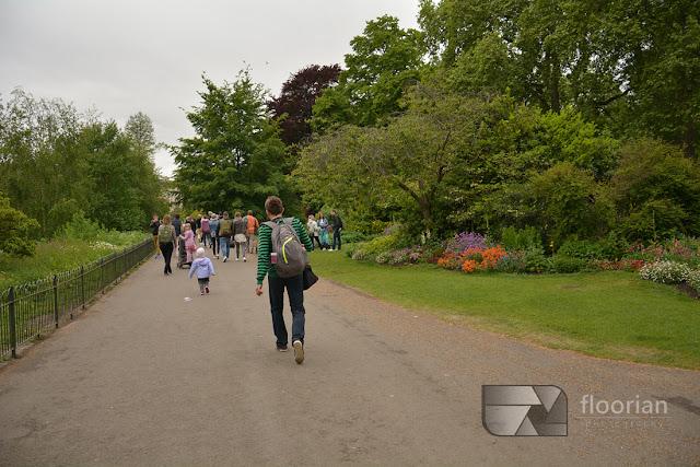 St. James Park to uroczy park otoczony najbardziej znanymi atrakcjami Londynu, rozciągający się od Pałacu Buckingham do Horse Guards Parade.