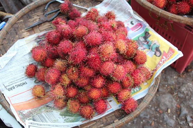 Rambutan Vietnam