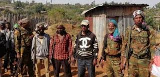 Ethiopia's returnee OLF rebels on hunger strike