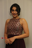 Actress Regina Candra Latest Stills in Maroon Long Dress at Saravanan Irukka Bayamaen Movie Success Meet .COM 0025.jpg