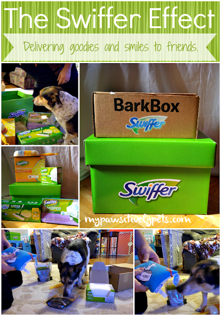 The Swiffer Effect - Delivering a Welcome Home Kit to a friend.