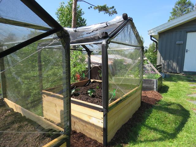 Growcamp drivtelt, praktiske, med neting og plast. Alt du trenger for å drive frem grønnsaker og andre planter fra tidlig vår.