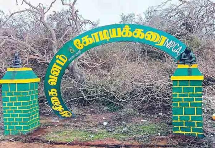 கஜா: கோடியக்கரையில் மடிந்து போன விலங்குகள்!