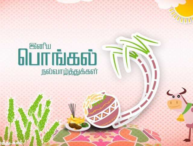 wallpapers of pongal in tamil