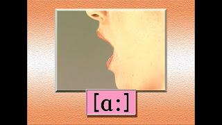 英語の発音が正しくなる本 例5