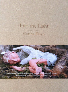Into the Light book in a box by Corina Duyn - a wooden box with paper sleeve