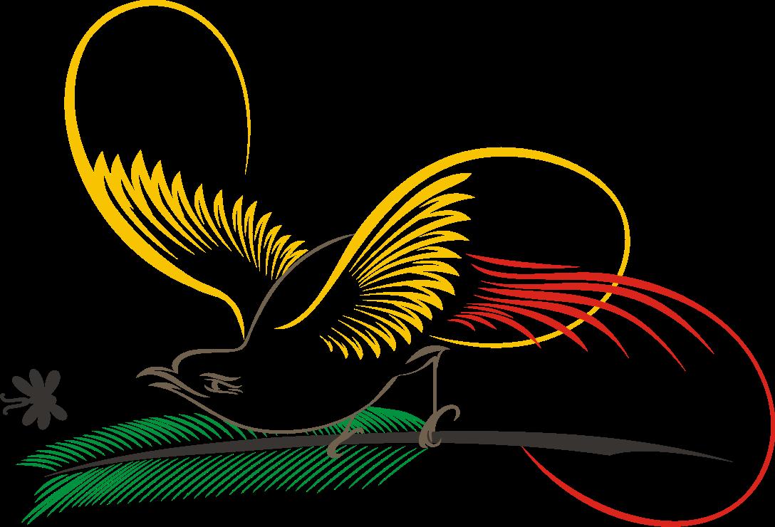 Gambar Animasi Burung Cendrawasih Pickini