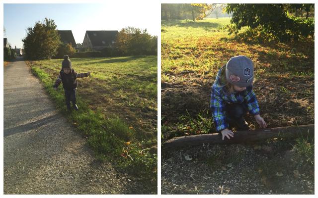 Kugelfisch-Blog: Sonntagsspaziergang im Herbst