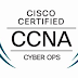 CCNA (Version 1.1) - CyberOps Chapter 8 Exam Answers