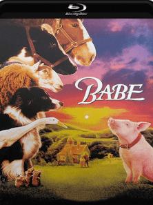 Babe – O Porquinho Atrapalhado 1995 Torrent Download – BluRay 720p e 1080p 5.1 Dublado / Dual Áudio