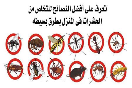 التخلص من الحشرات فى المنزل